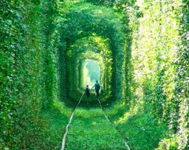 恋のトンネル