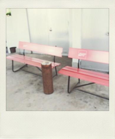 ☆部活っぽい。青春っぽいベンチ。